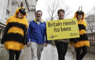 /imgs/britain_needs_its_bees.jpg