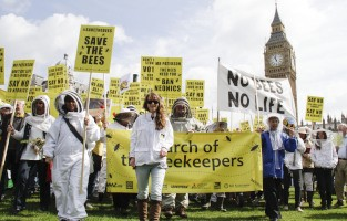 /imgs/march_of_the_beekeepers_event.jpg