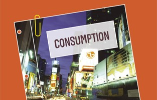 Consumption policy position