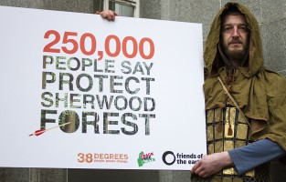 Sherwood Forest petition hand in