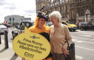 the_bee_cause_action_westminster