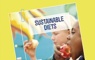 Sustainable diets policy position