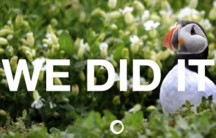 The EU is keeping its nature laws, which is great for UK wildlife such as puffins