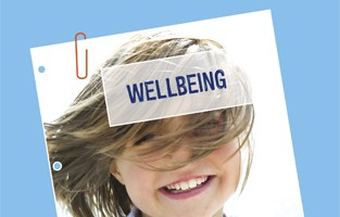 Wellbeing policy position