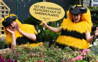 Campaigners make the point about pesticides at a garden centre