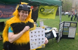 A giant bee at the Oxford Bee Fest