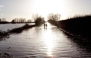 flooding_landing_page_313.jpg